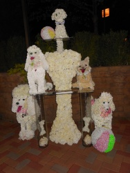 Artfully sculpted carved dogs!!!